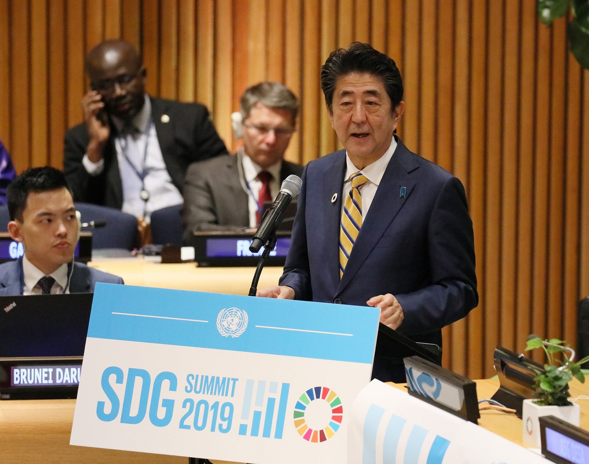 Photograph of the SDG Summit (1)