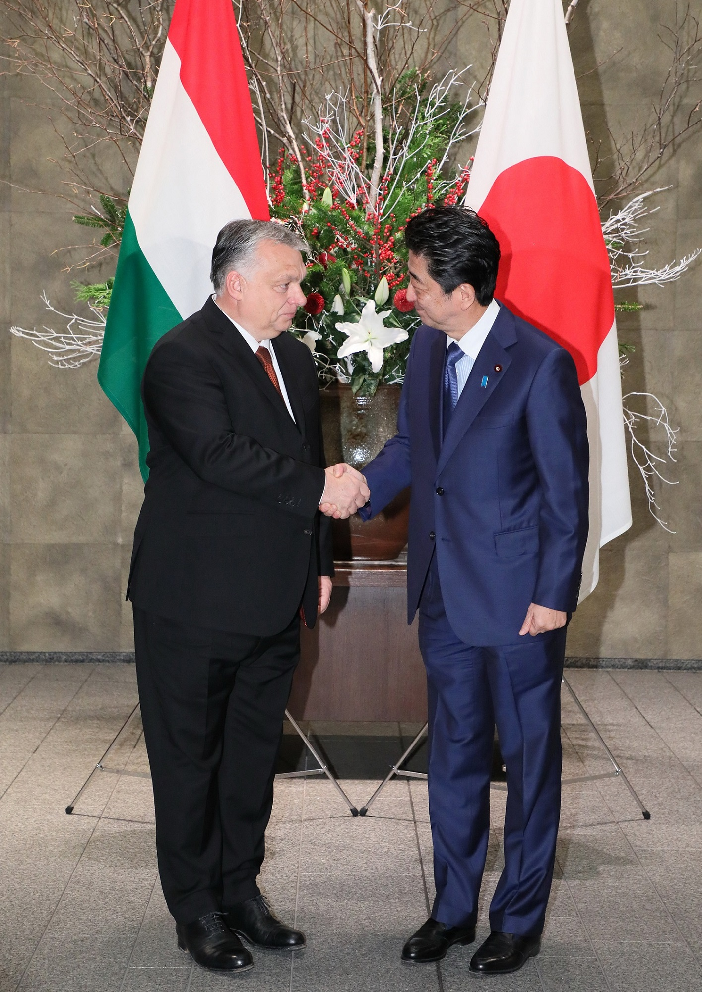 Photograph of the Prime Minister greeting the Prime Minister of Hungary (3)