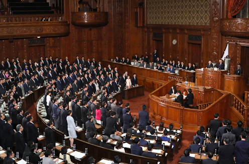 Photograph of the vote at the plenary session of the House of Representatives